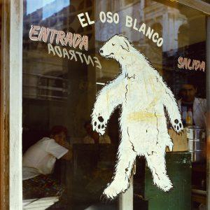 White cuban bear, 2007